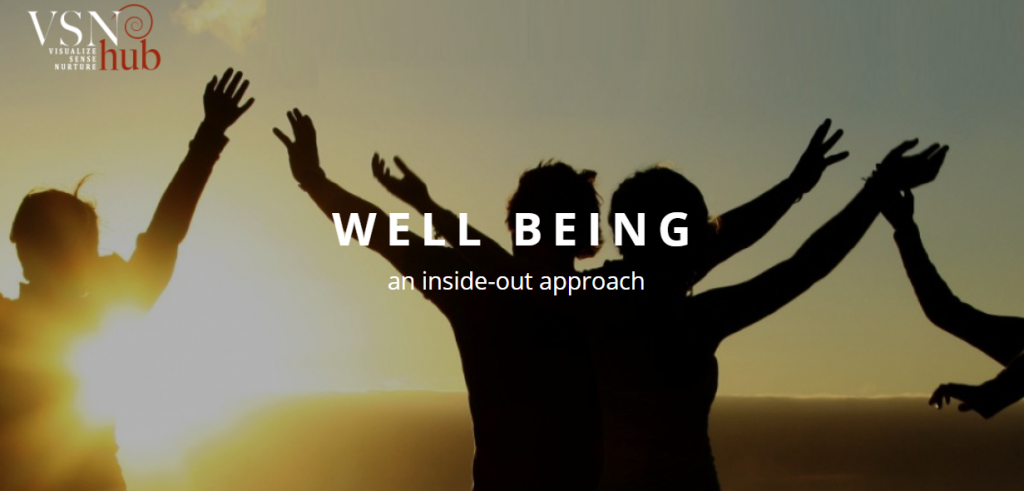 VSN HUB well being